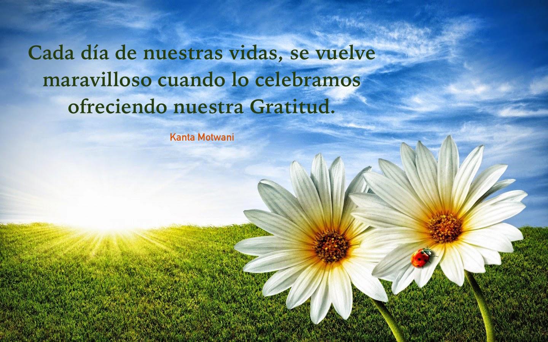 flowers_in_gratitude